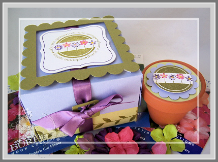 choice-png-flower-pot-box.png